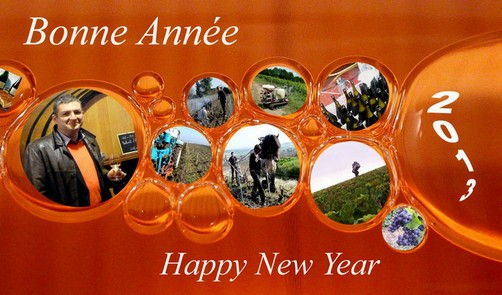 Champagne Bonne Année - Happy New Year 2013