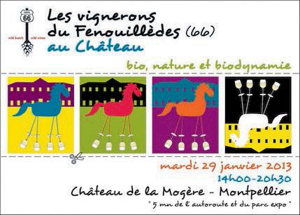 Janvier 2013 journal d 39 un vigneron de champagne for Salon bio montpellier