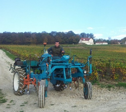 labour d'automne - Champagne - soft ploughing