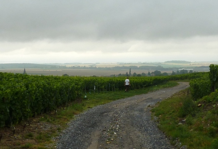 Champagne 2011 Hailstorm